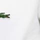 Lacoste a Roma lo trovi in negozio da Hom's in Viale Ventuno Aprile, 70. Abbigliamento classico uomo con ampia selezione di abiti e capi casual